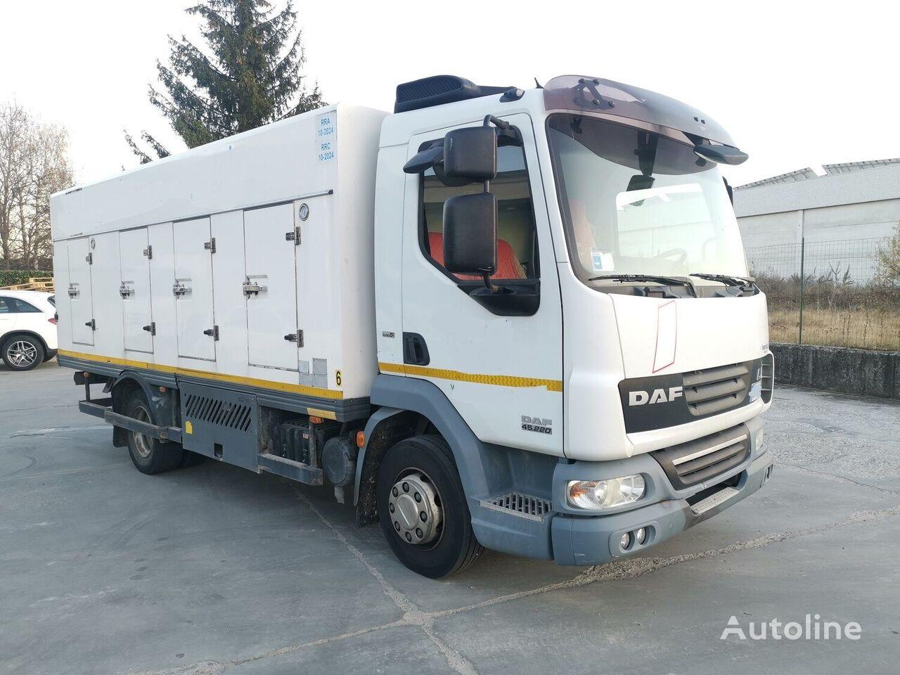 DAF 45.220 SURGELATI ATP 10/2024 - 120QLI camión de helados